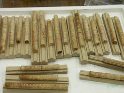 Figure 1. Increment wood cores